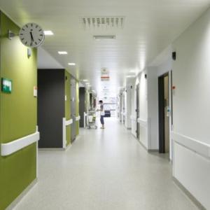 Dažai ligoninėms plaunami valomi atsparūs trinčiai sienų dažai