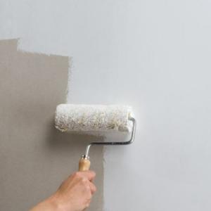 Priešpelėsiniai dažai sienoms
