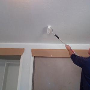 Priešpelėsiniai dažai luboms